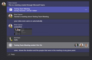 Screenshot Teams Meeting Tab